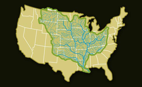 Mississippi Connection  Louisiana Swamp Base